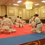 Shorin-Ryu karate has combative application for ground fighting and striking