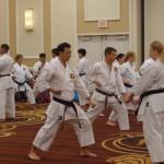 Traditional Yakusoku kumite practice